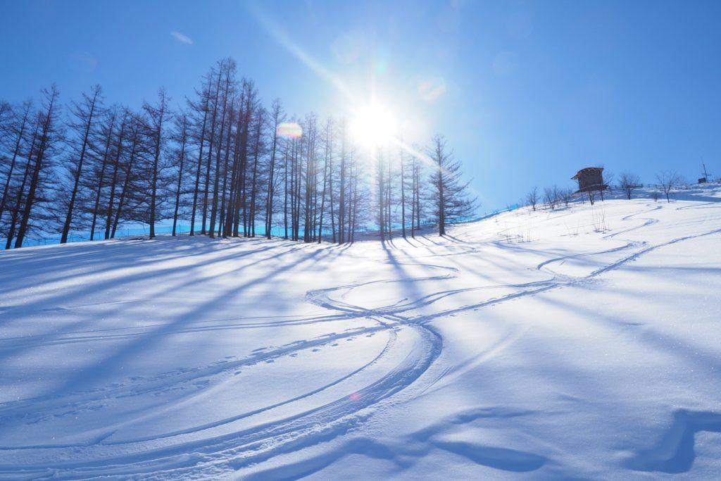 スキー場の雪