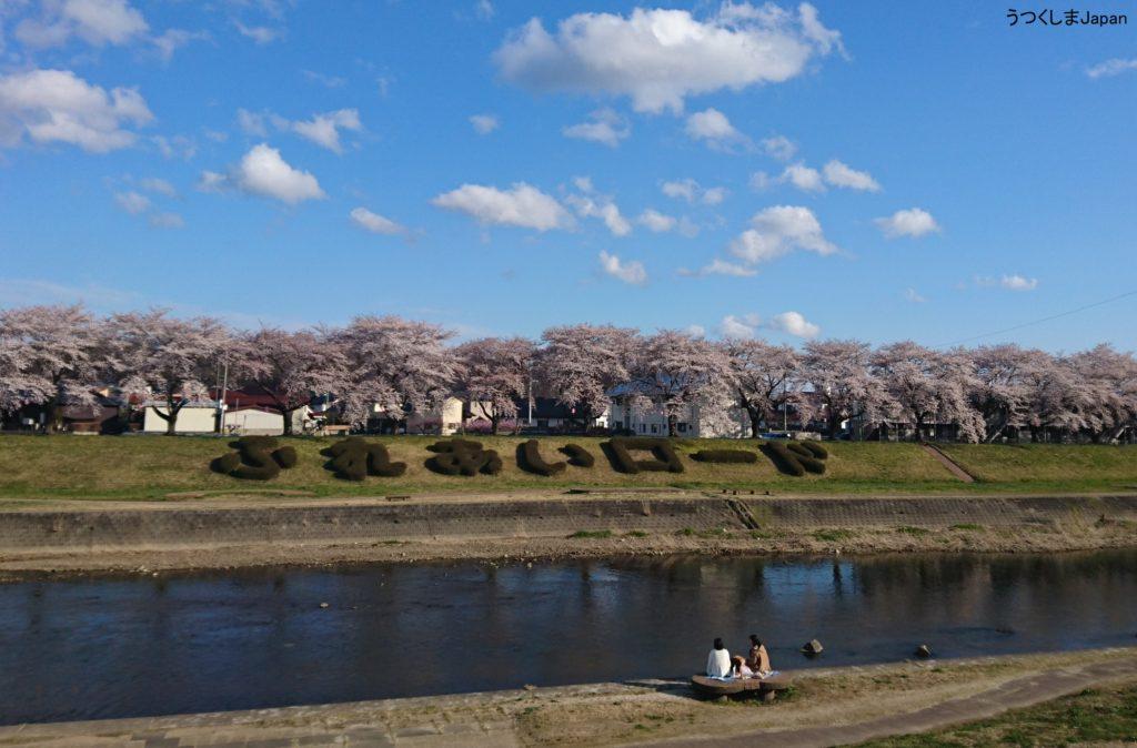 満開の桜ふれあいロード